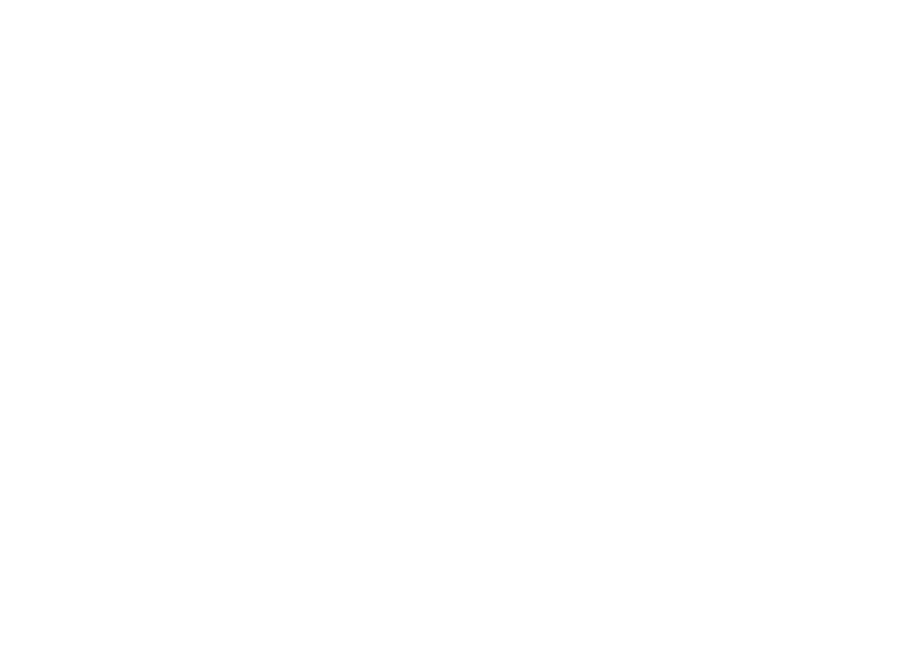 Network Theatre